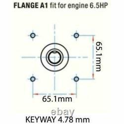 High Pressure Power Washer Pump DeWalt 3000 Honda GX160 GX200 3000 PSI 3.1 GPM